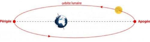L'orbite de la Lune ne décrit pas un cercle parfait autour de la Terre, mais une ellipse. La distance Terre-Lune varie donc considérablement: la Lune peut se situer exactement entre 356 400 km au plus près de la Terre (périgée) et 406 700 km au plus loin de la Terre (apogée).